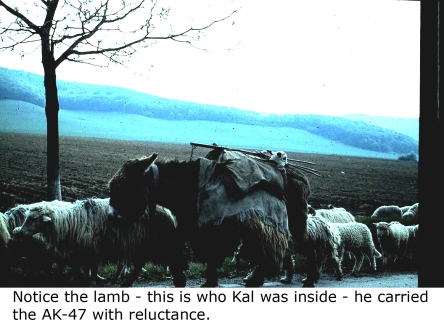 Kal's ride