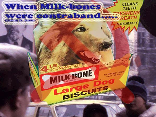bone cover